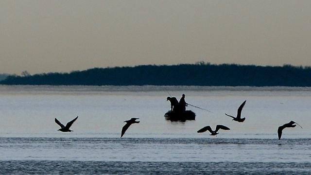 Costs expected to spike for york county 39 s chesapeake bay for Hopewell fish and game